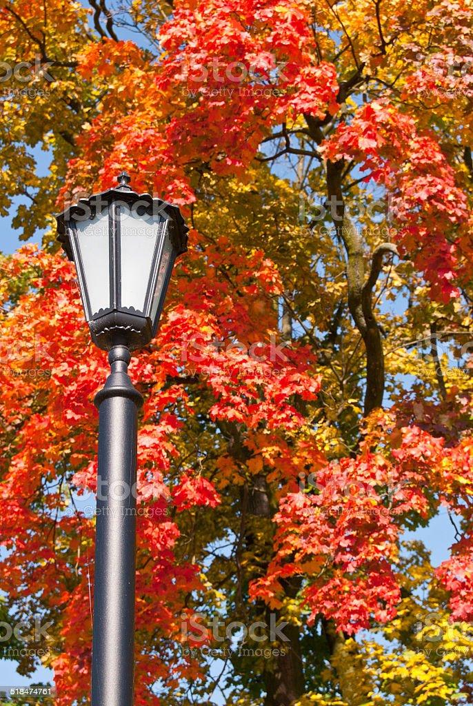 Old fashioned lamppost foto de stock libre de derechos