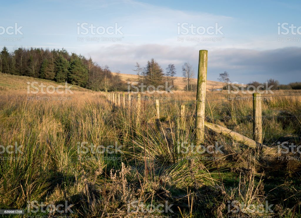 Old Fence in Cumbria stock photo