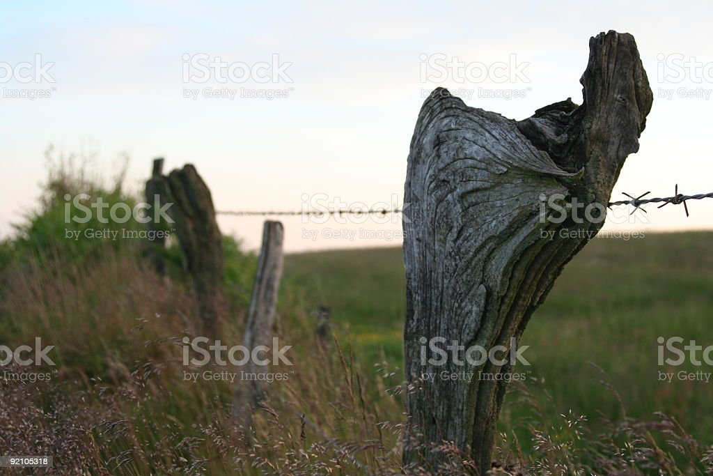 Old Fence stock photo
