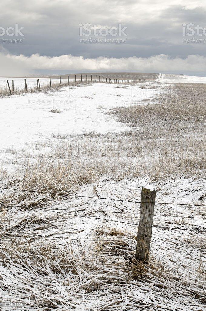 Vieille clôture Post en hiver Field photo libre de droits