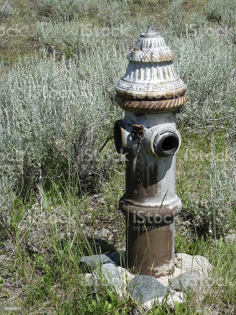 Old Fire Hydrant - Tin Cup, Colorado stock photo