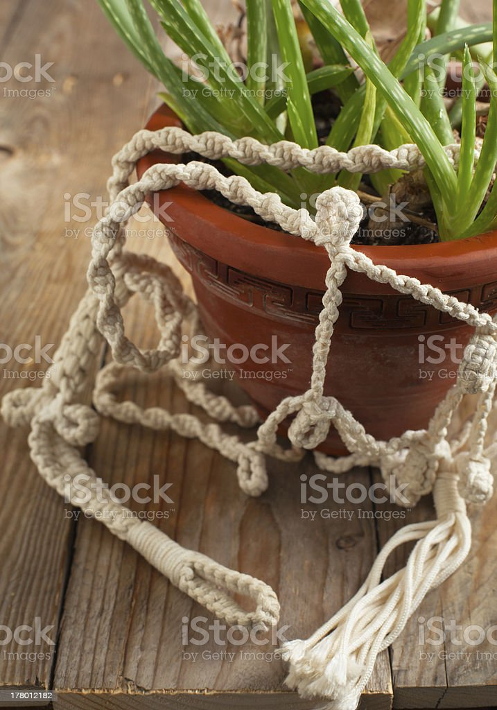 Old flower pot in macrame holders stock photo