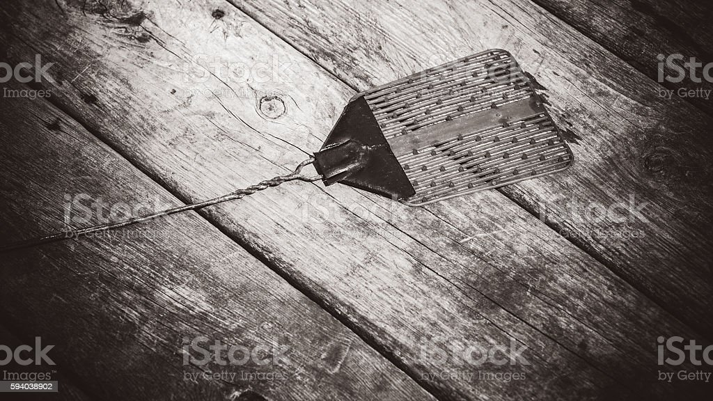Old Fly Swatter stock photo