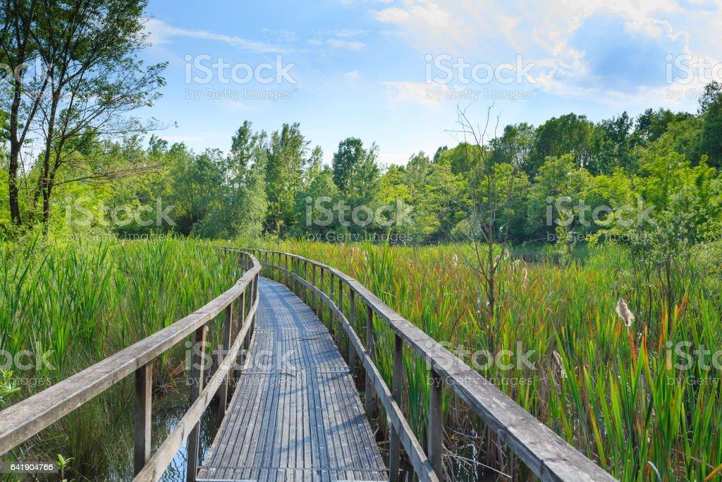 Old footbridge over lagoon stock photo