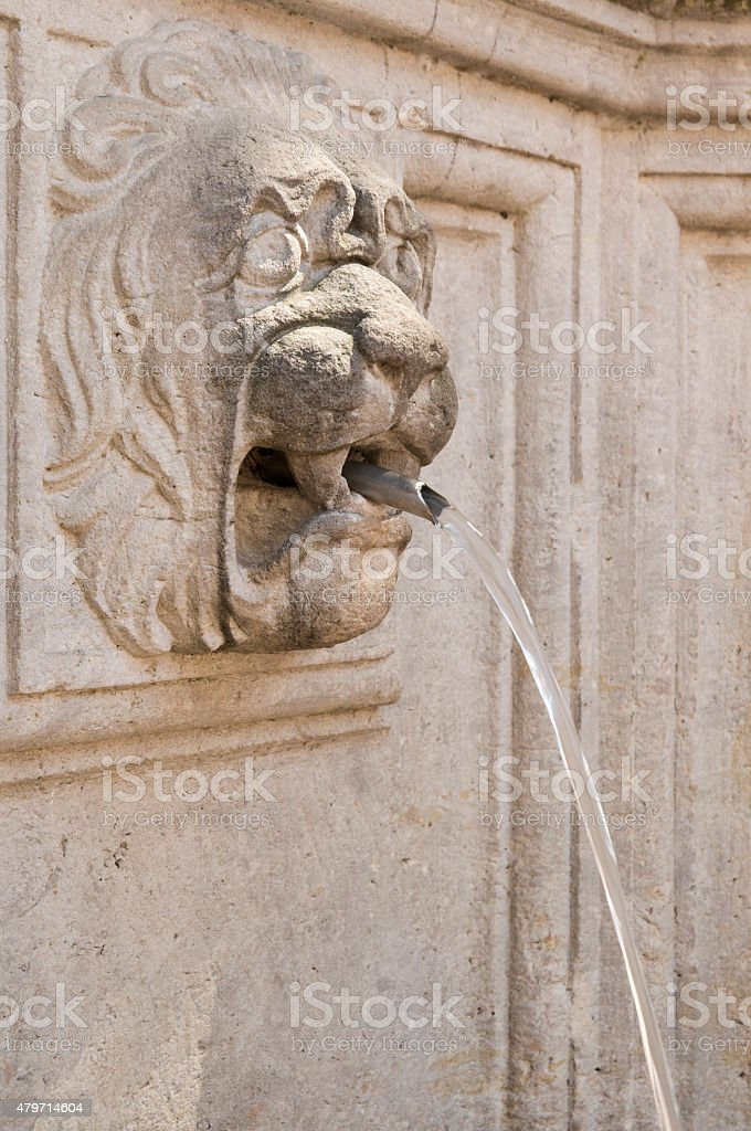 Old fountain with water-spouting lion head stock photo