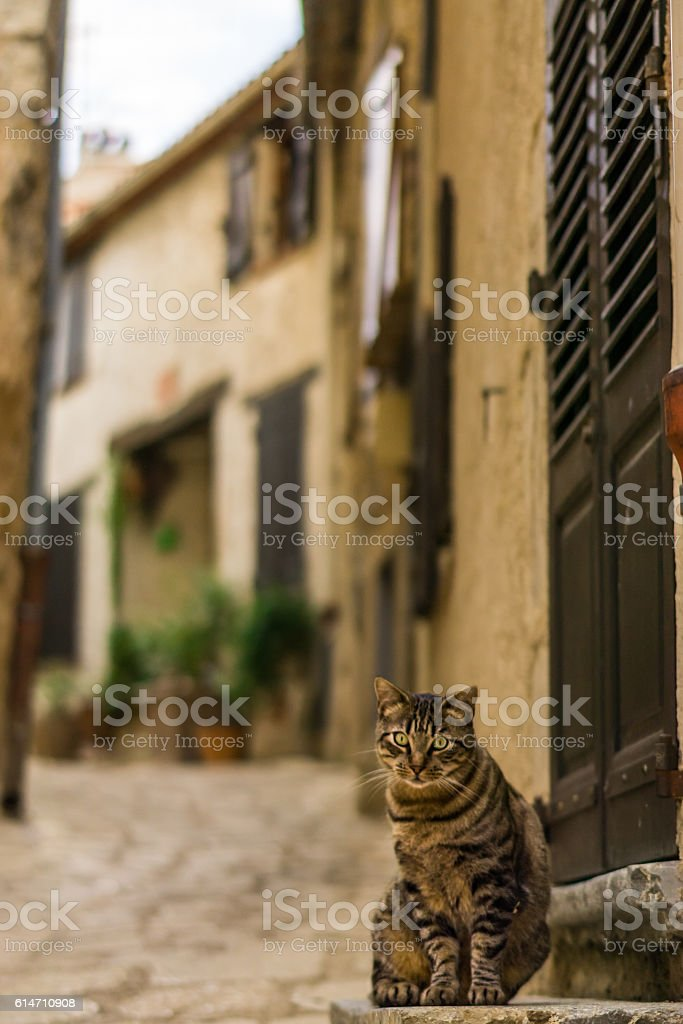 Old France stock photo