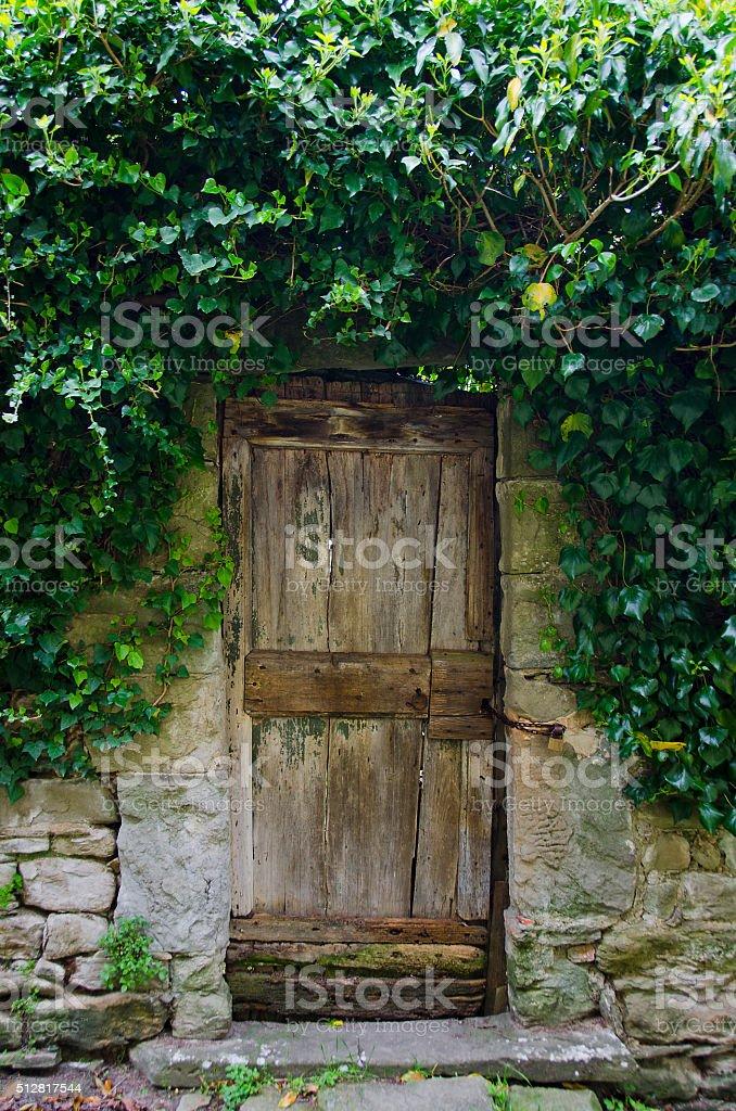 Old Garden Door in Cortona, Italy stock photo
