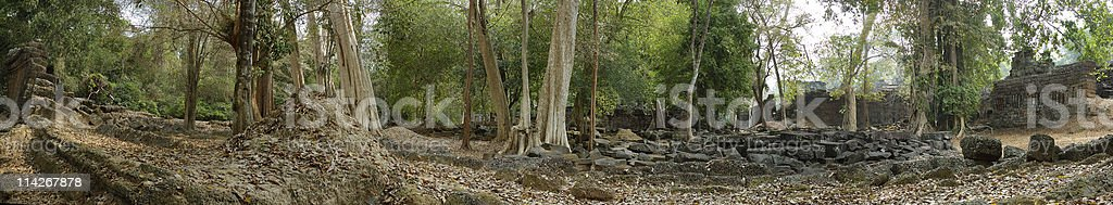 Old garden of temple in angkor royalty-free stock photo
