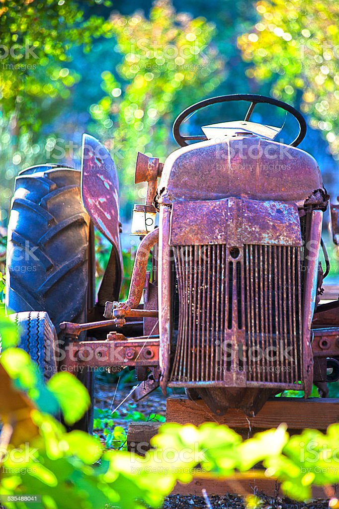 Old Garden Tractor stock photo