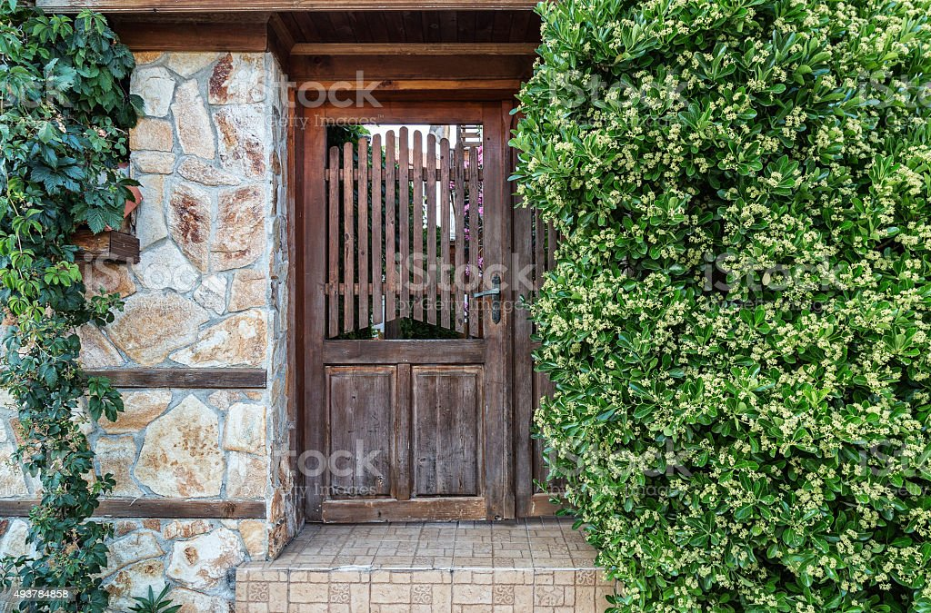 Old gate surrounding by greenery stock photo