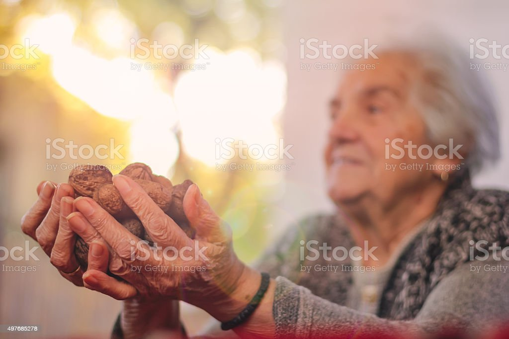 old grandmother holding walnuts stock photo