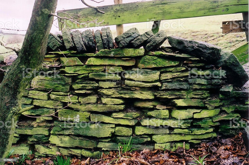 Old Green Wall royalty-free stock photo