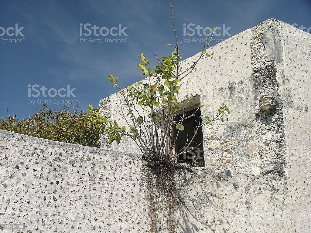 Old hacienda royalty-free stock photo