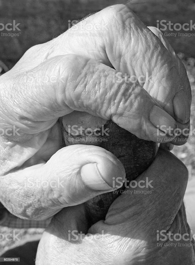 Old Hands. stock photo