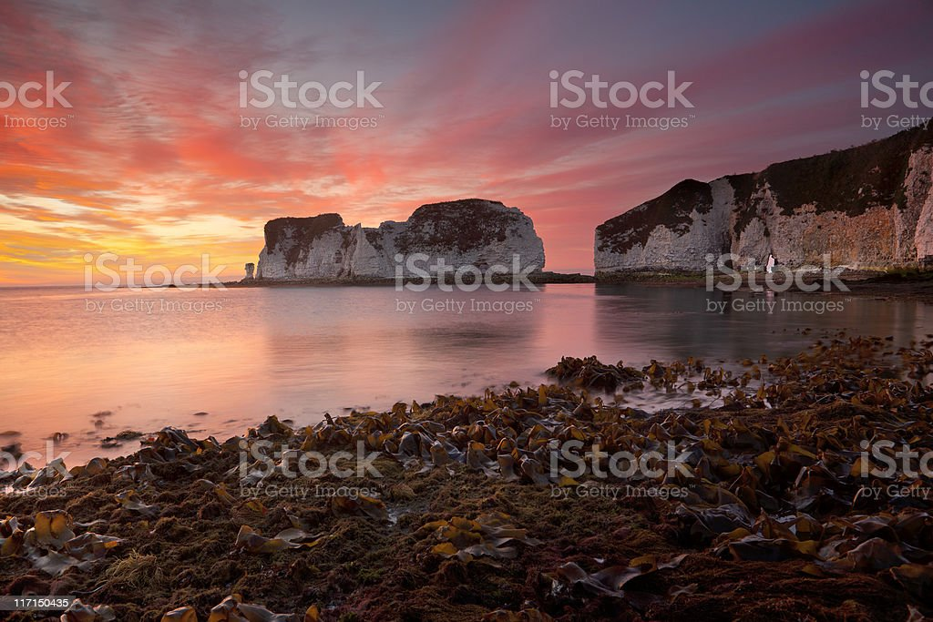 Old Harry Rocks, sunrise stock photo