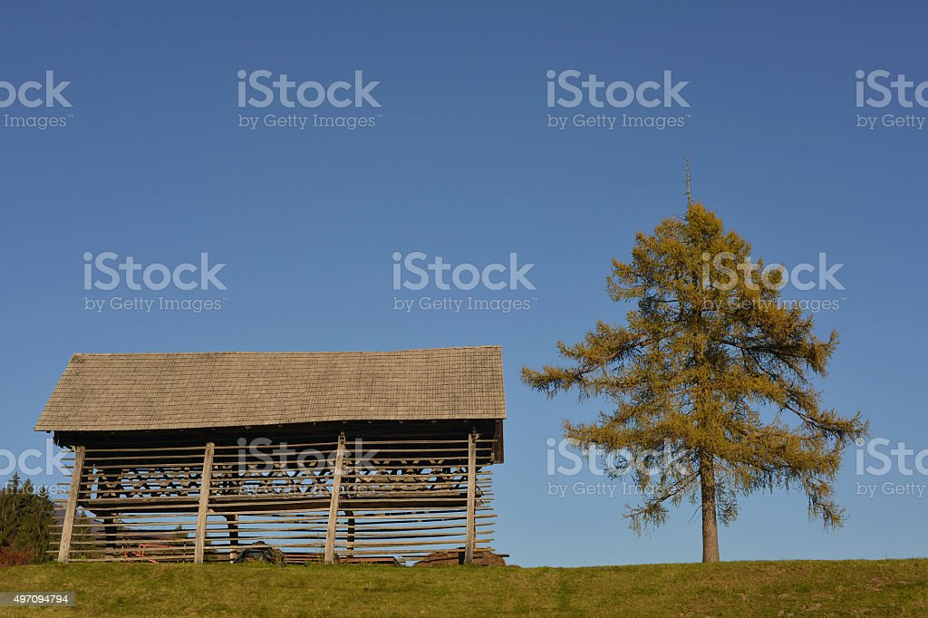 Old hay stack and a tree stock photo