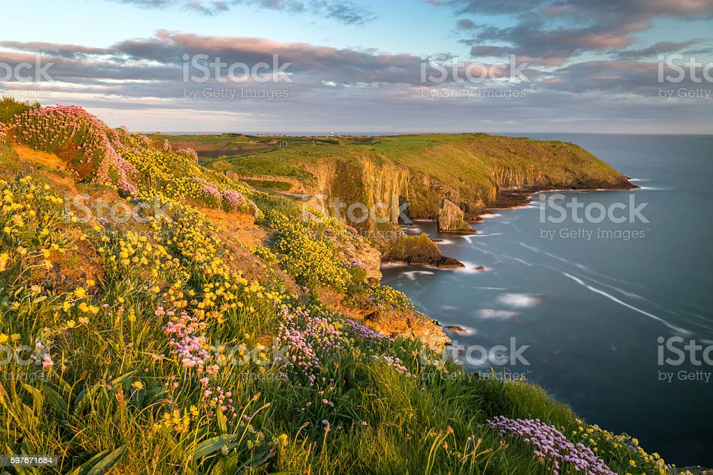 Old Head of Kinsale stock photo