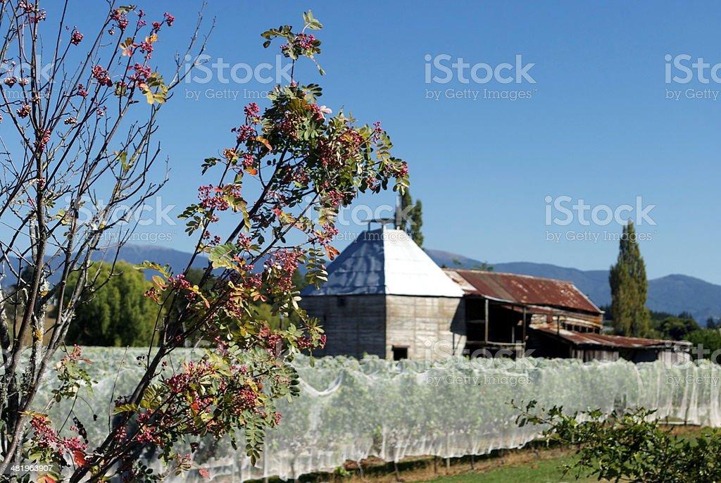 Old Hop Kiln, Moutere, New Zealand stock photo