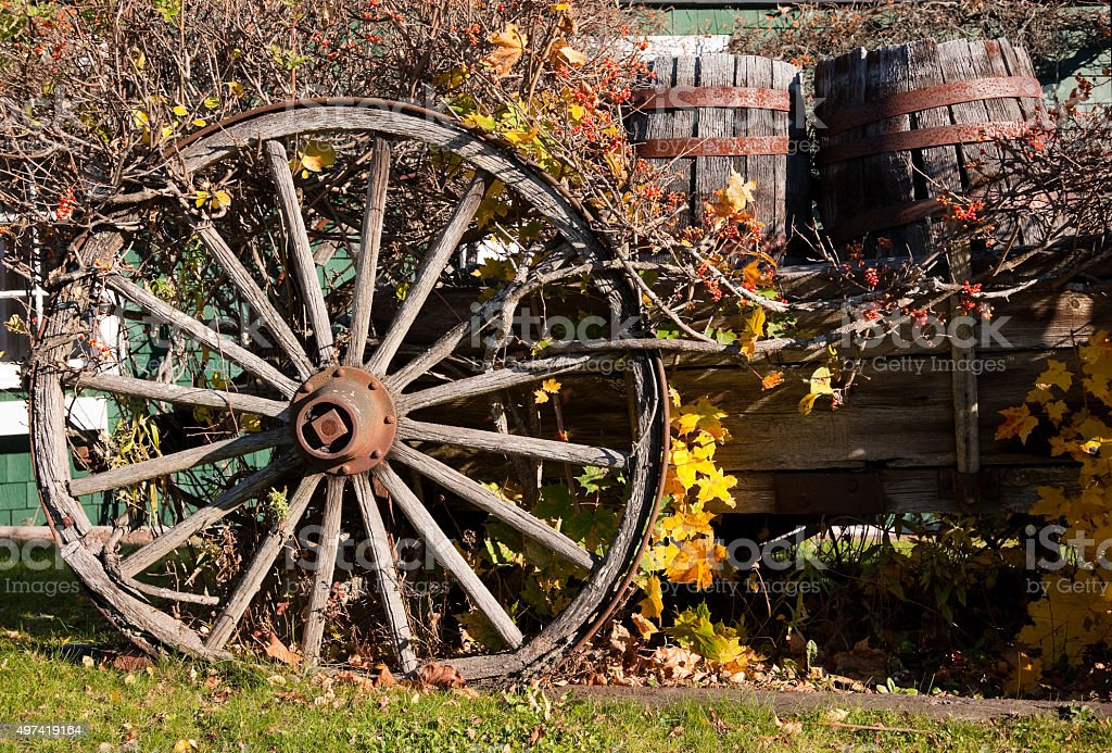 Old Horse drawn wagon with barrels stock photo