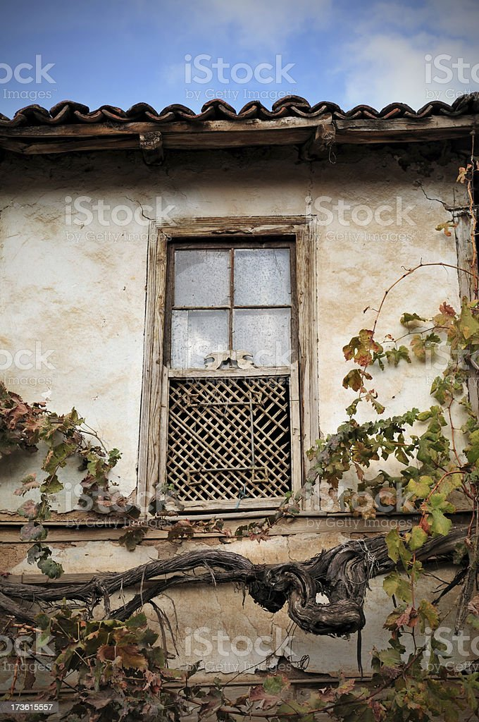 old house and ivy royalty-free stock photo