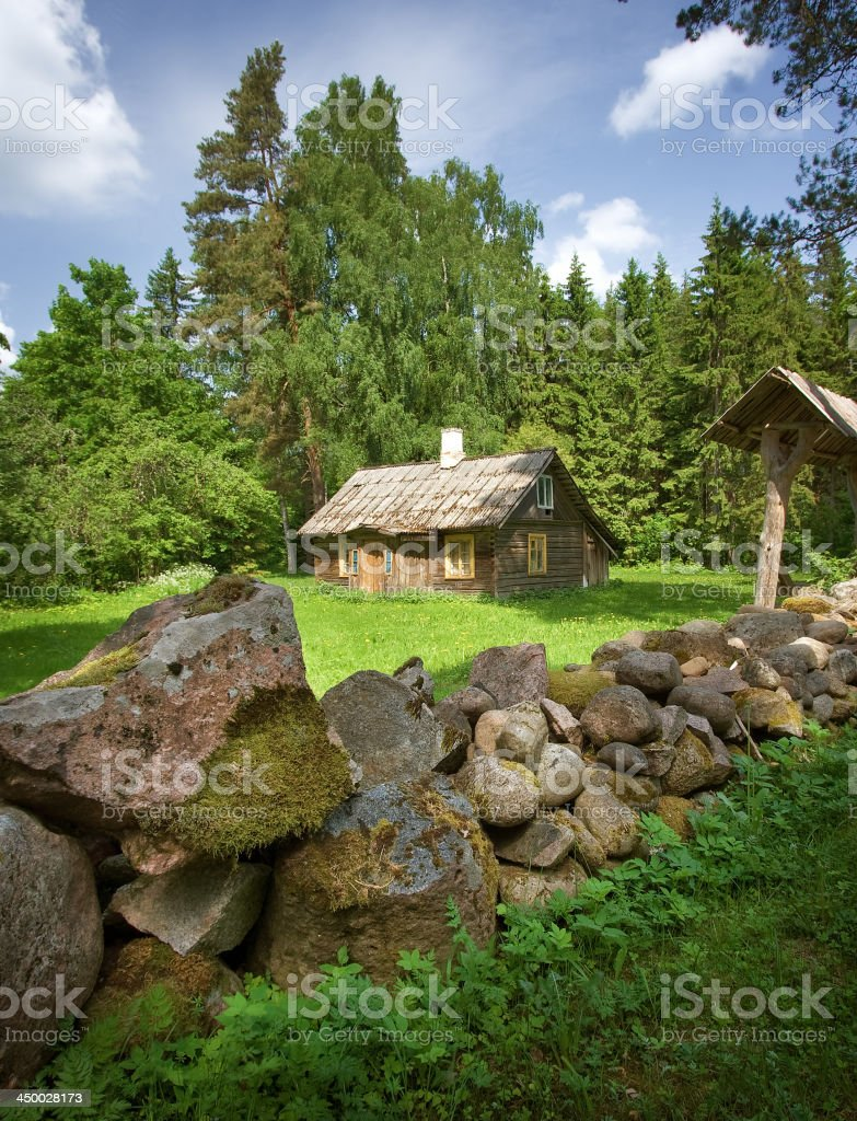 Old house in the forest stock photo