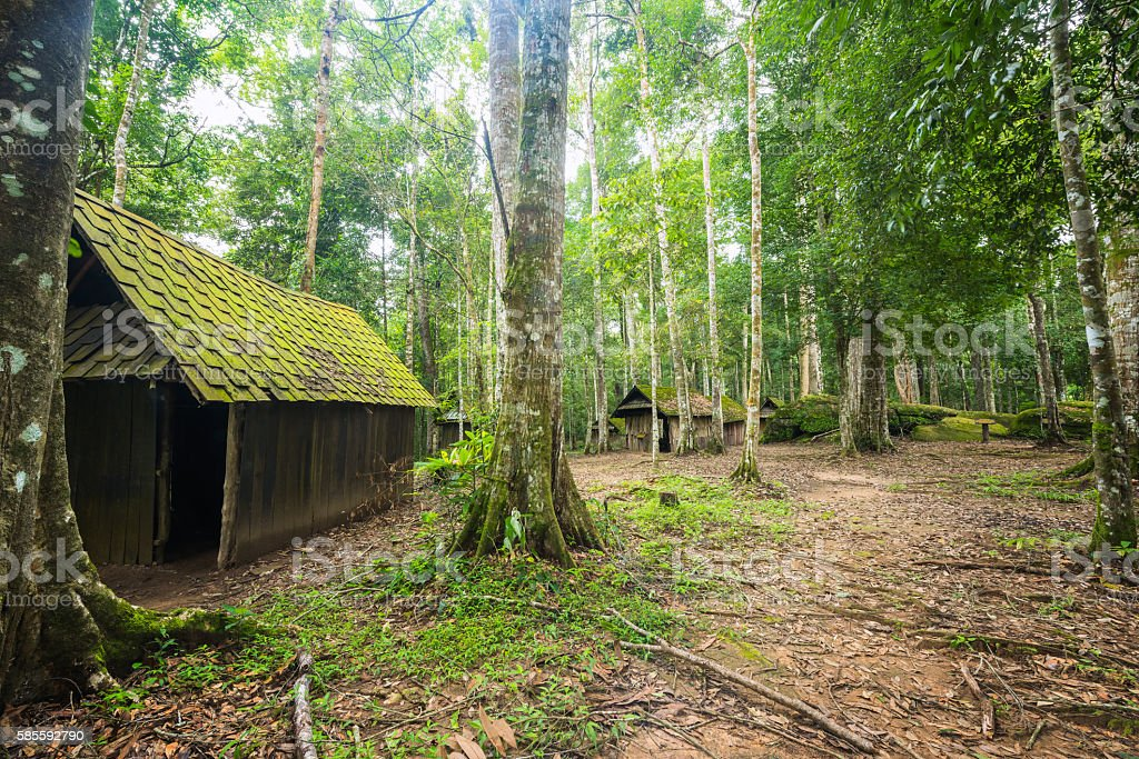 Old hut at evergreen forest, Desolated house at deep jungle stock photo