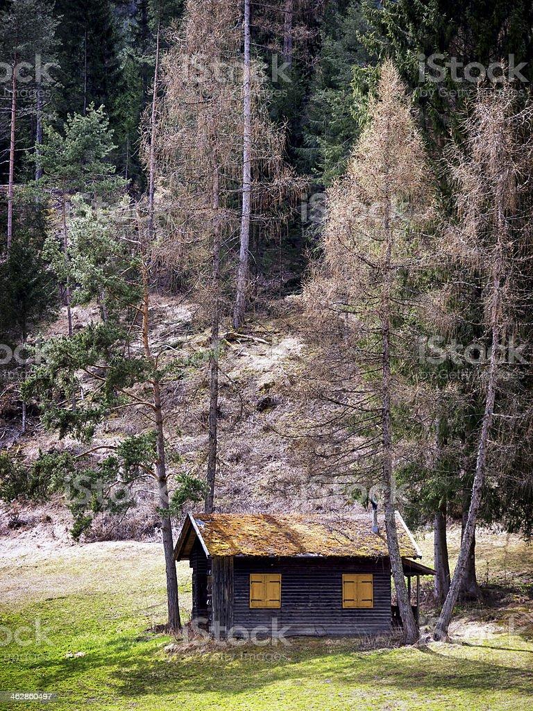 old hut stock photo