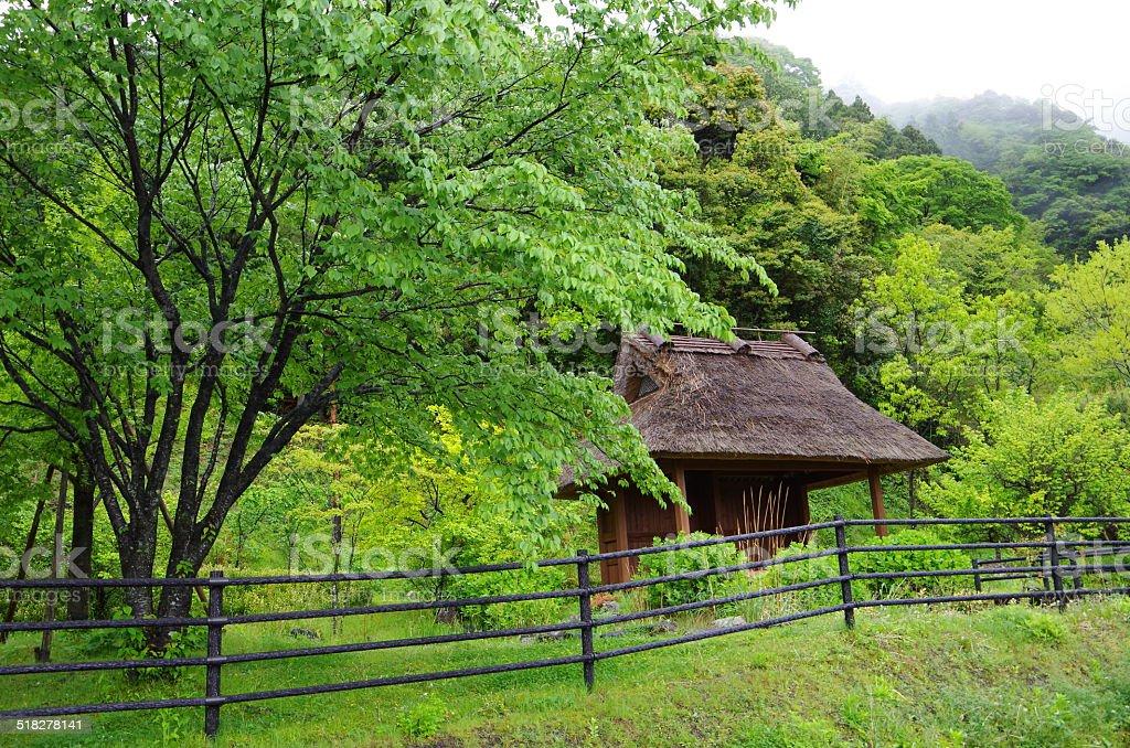 Old hut foto de stock libre de derechos