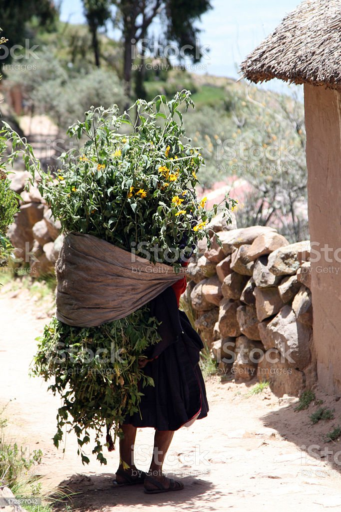 Old inca women with flowers on his back royalty-free stock photo
