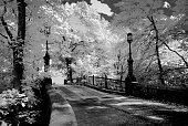 Old Iron Bridge-Infrared