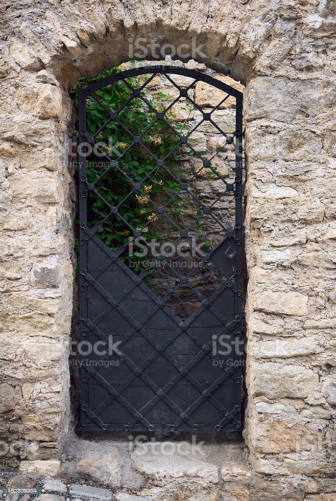 Old iron door royalty-free stock photo