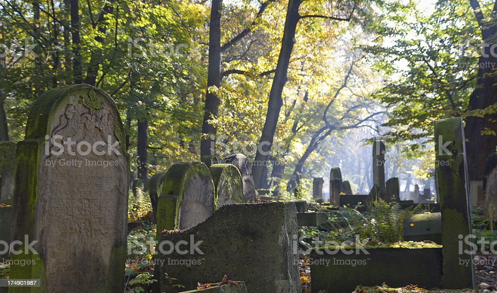 Old Jewish Cemetery royalty-free stock photo