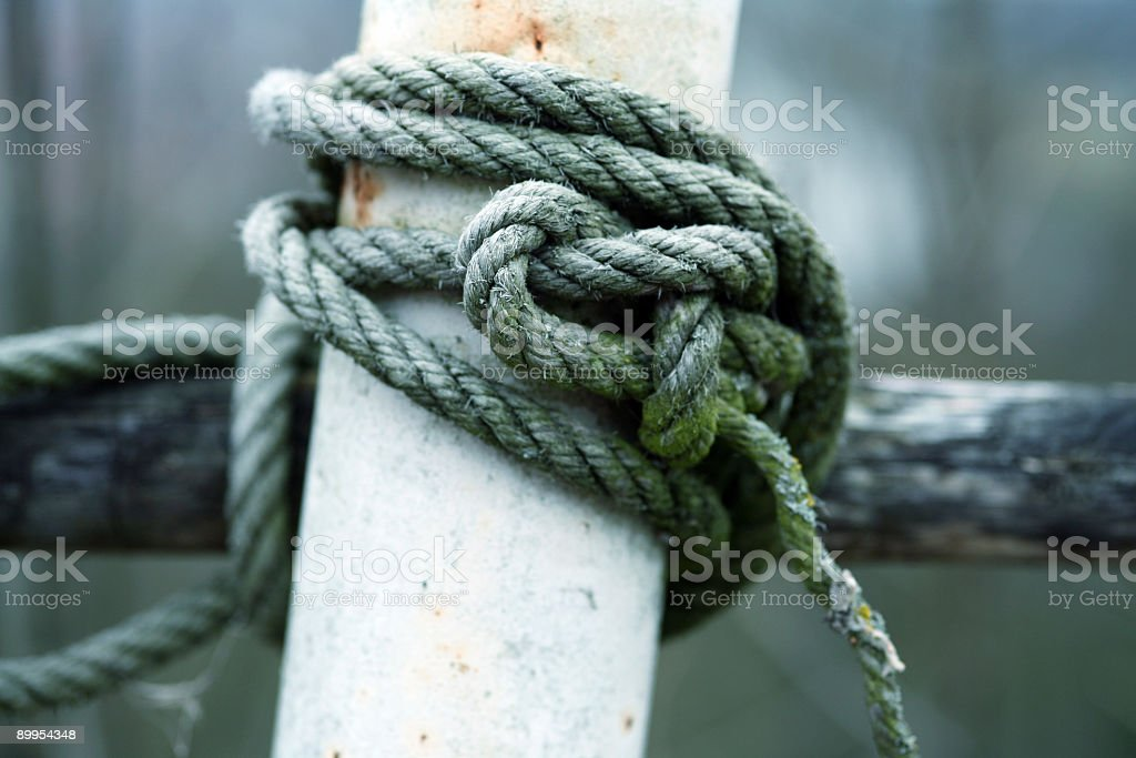 Old knot royalty-free stock photo