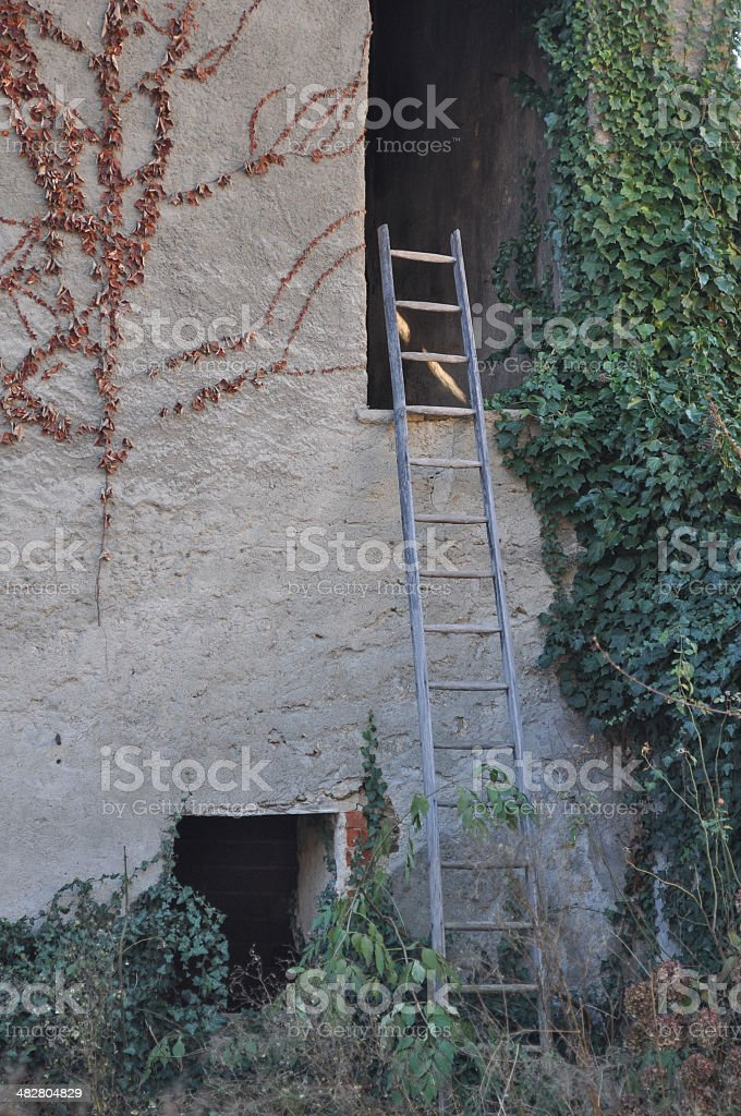 Old ladder stock photo