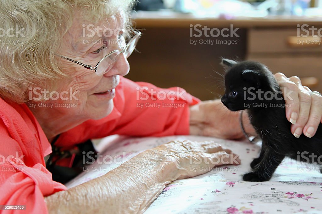 Old lady and her beloved cat stock photo