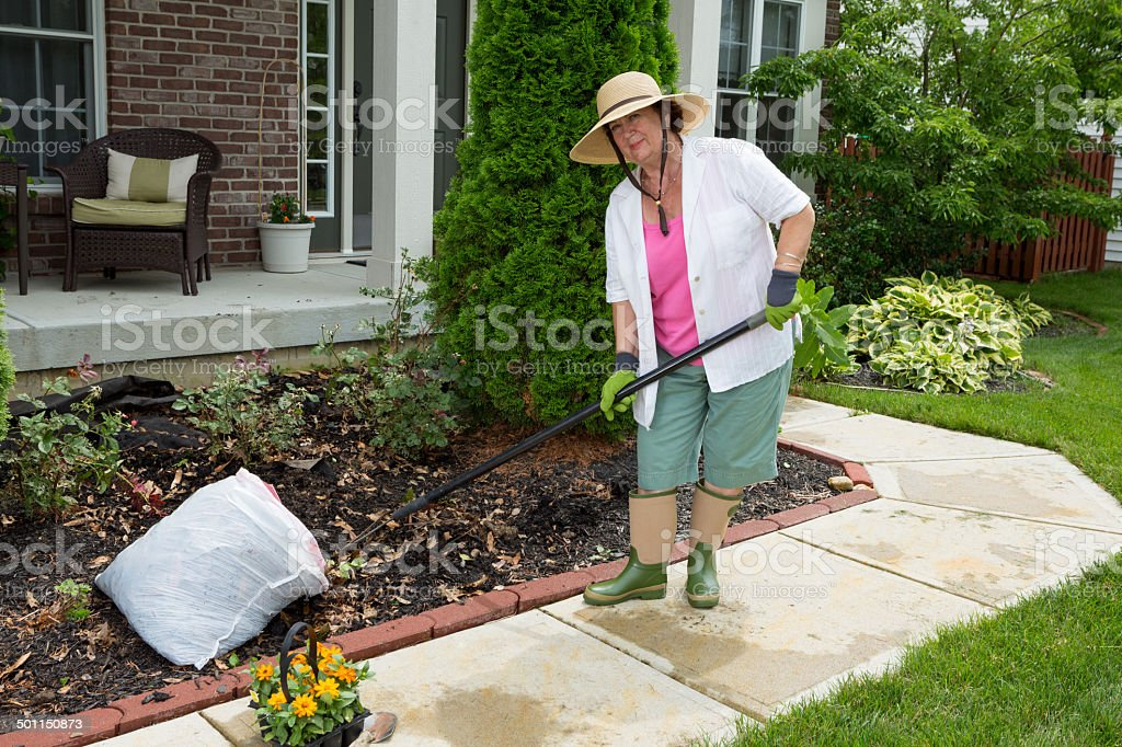 Old lady at work in the garden cleaning flowerbeds stock photo