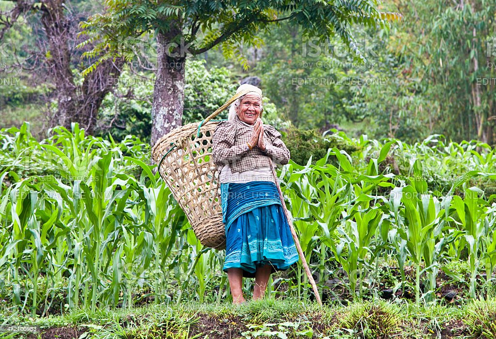 Old lady with carrying backet on back, Nepal. stock photo