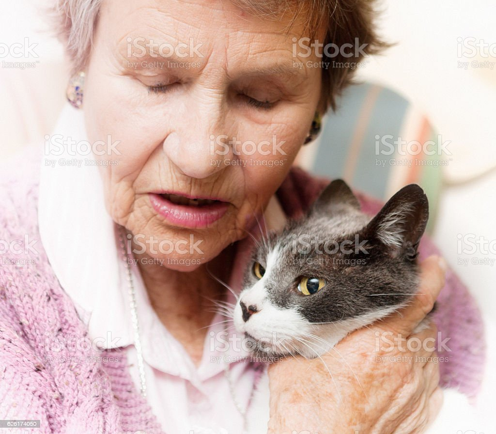 Old lady with closed eyes strokes her precious pet cat stock photo