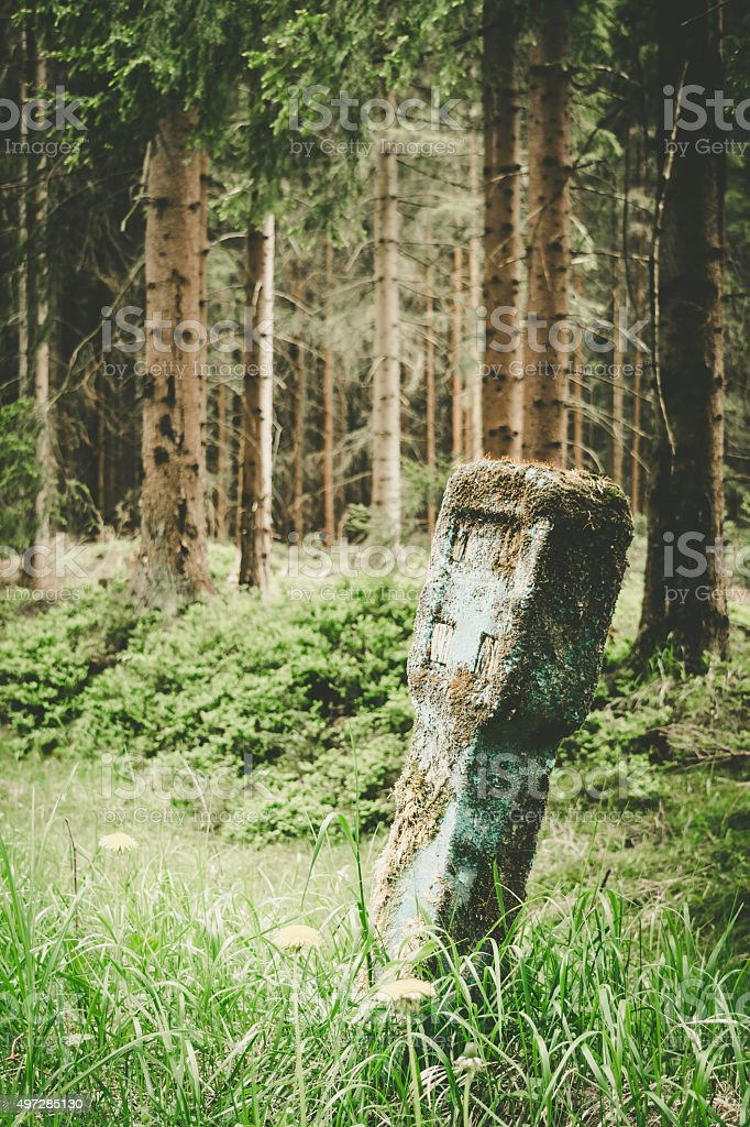old landmark in the forest stock photo