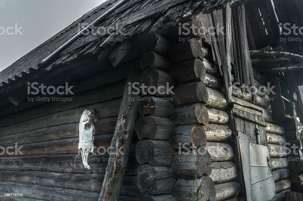 Old log haunted house with horse skull on gray wall stock photo