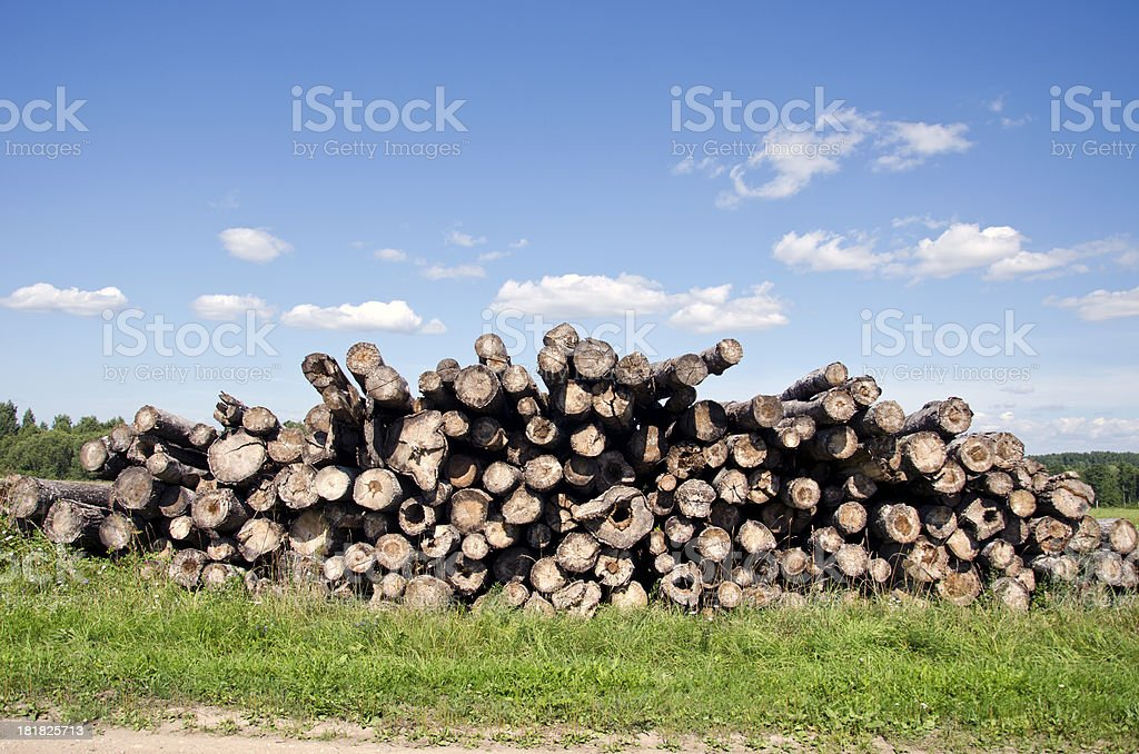 old log stack on field royalty-free stock photo