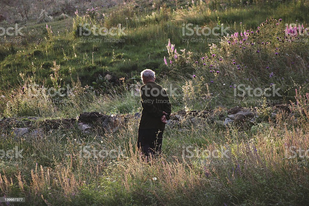 Old man in Alpine meadows stock photo