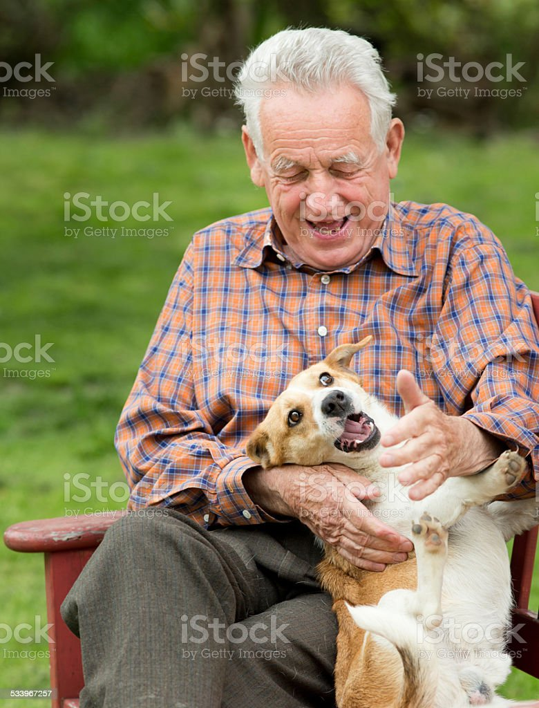 Old man playing with dog stock photo