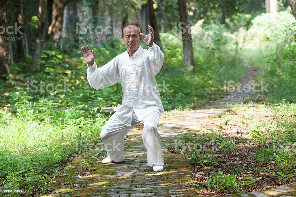 old man practice tai chi in the park stock photo