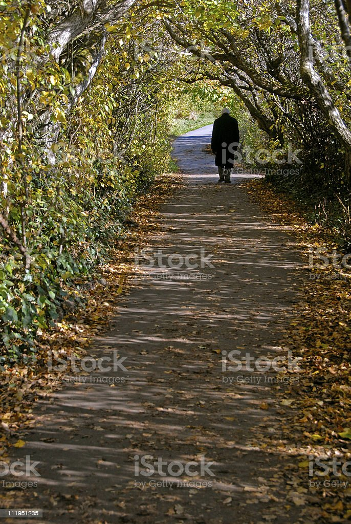 Old Man Walking Along Path With Tree Canopy Tunnel royalty-free stock photo