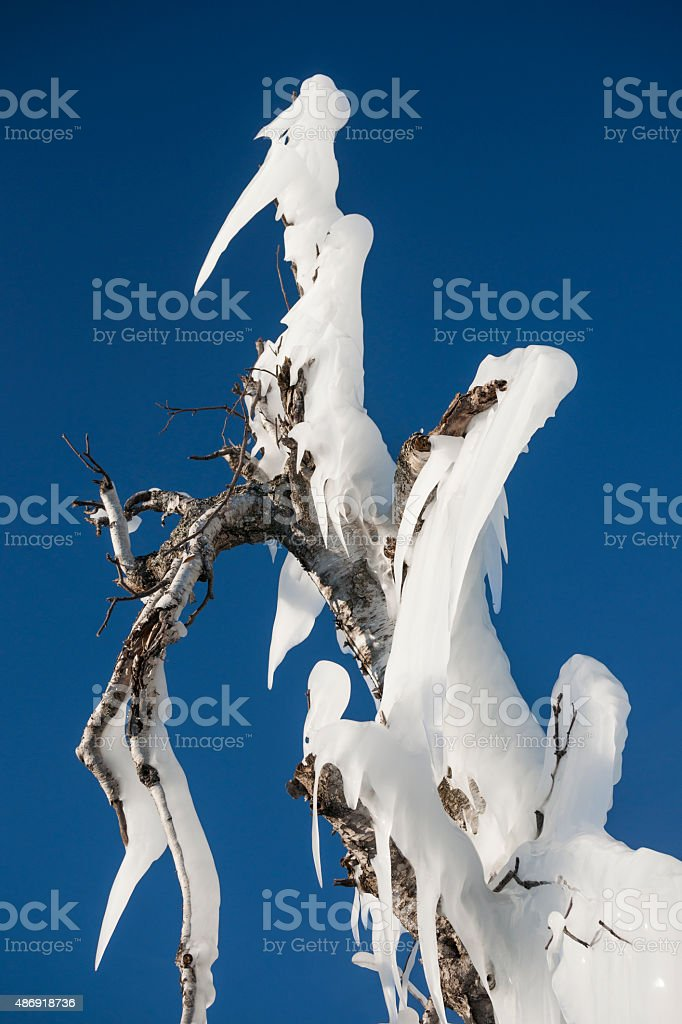 Old man winter face in frozen ice stock photo