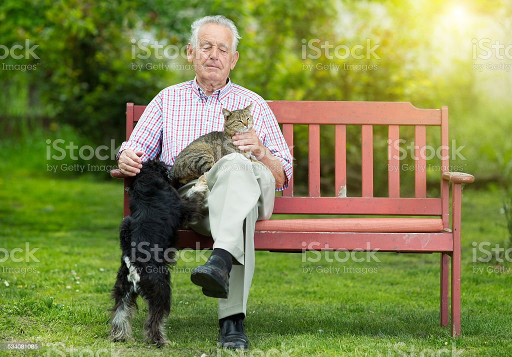 Old man with dog and cat stock photo