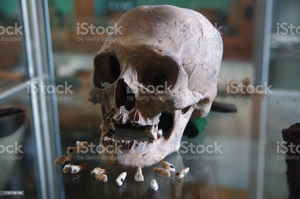 Old Mayan Skull and Teeths stock photo