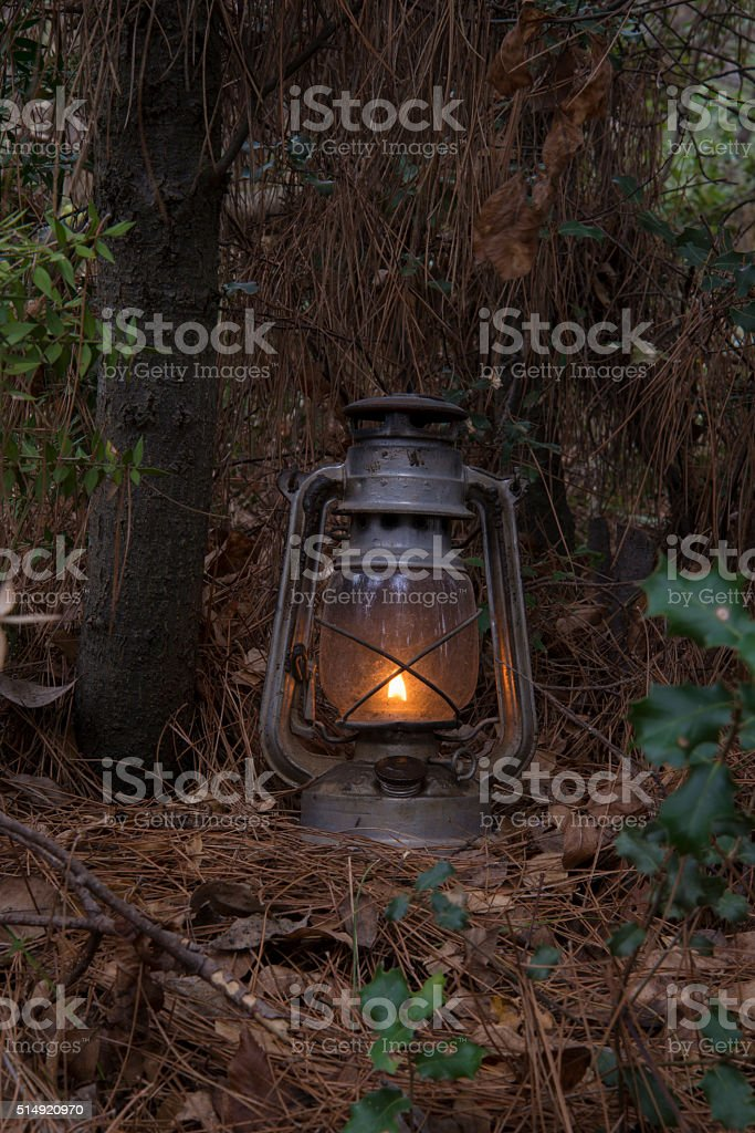 Old metallic dirty and rusty kerosene lamp at forest stock photo