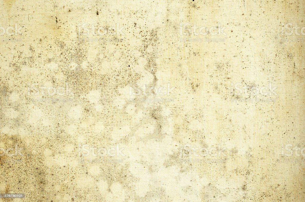 Old moldy canvas royalty-free stock photo